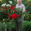 Stock Photo: Grower of roses