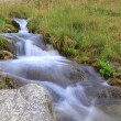 Purely clemountain stream — Stock Photo #4345443
