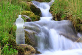 Plastic bottle with clean water — Stock Photo