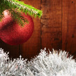 Merry Christmas — Stockfoto #4349594