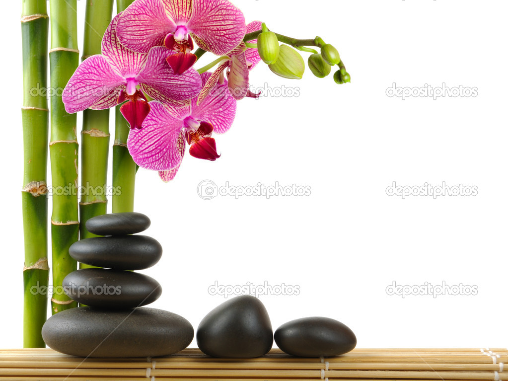 Spa concept zen stones and  orchid — Stok fotoğraf #4810745