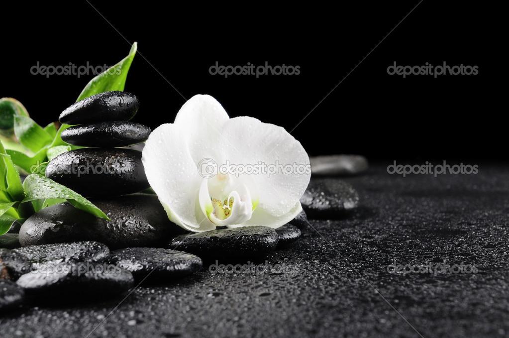 Zen stones and  white orchid in the water — Foto Stock #4810859