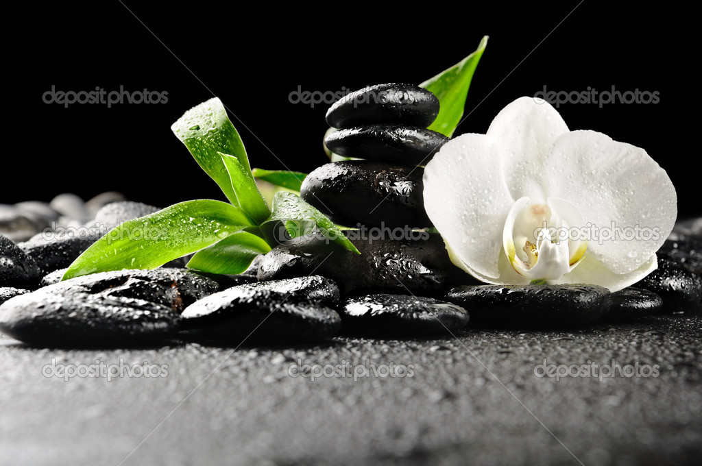 Zen stones and  white orchid in the water — Stock Photo #4810920