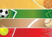 Sport balls banner — Stock Vector