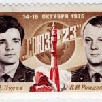 Постер, плакат: Russian astronauts Zydov and Rozdestvenski