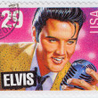 Singer Elvis Presley — Stock Photo #4027313