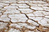Dry salt field in Dead Sea Israel — Stock Photo