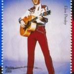 Постер, плакат: Singer Elvis Presley