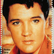 Elvis Presley — Stock Photo #4430869