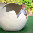 Baby in egg — Stock Photo
