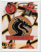 Bruce Lee — 图库照片