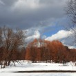 Lake in the park with dramatic sky, early spring — Stock Photo #4880588