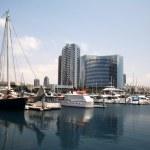 san diego portu i centrum — Zdjęcie stockowe #5149603