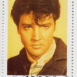 Elvis Presley — Stock Photo #5248108