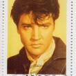 Постер, плакат: Elvis Presley