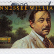 Tennessee Williams — Stock Photo