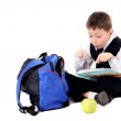 Schoolboy with book and apple isolated on white — Stock Photo
