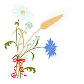 Field flowers. — Stock Vector