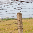 Barbed wire — Stock Photo #5019214