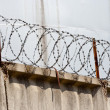 Barbed wire — Stock Photo #5019340