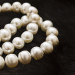 Foto Stock: White pearls