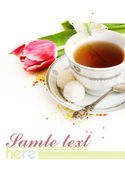 тюльпан и чашка чая — Stock Photo