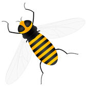 Bee — Stock vektor