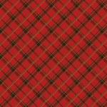 スコットランドの生地 2 — ストックベクタ