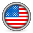 Usa flag button — Stok Vektör