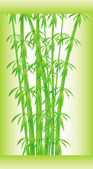 Stalks and bamboo leaves — Stock Vector