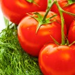 Vegetables for salad — Stockfoto