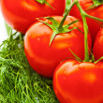 verdure per insalata — Foto Stock
