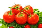 Groenten voor salade — Stockfoto
