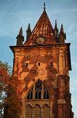 Vecchia torre gotica — Foto Stock