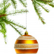 Decoration ball on fir branch — Stock Photo