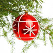 Red decoration ball on pine branch — Stock Photo #4666593