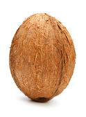 Coconut isolated on white — Stock Photo