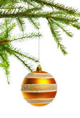 Decoration ball on fir branch — Stock Photo