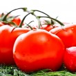 Stockfoto: Vegetables for salad