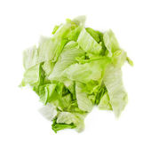 Green Iceberg Salad — Stock Photo