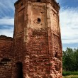 Ruins of old castle - Foto Stock