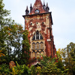 Old Gothic Tower — Stock Photo #5286085