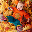 图库照片: Girl child in autumn orange leaves.