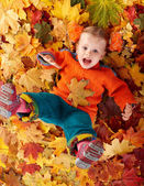 Girl child in autumn orange leaves. — Stock Photo