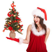 Christmas girl in santa hat with small tree in hand. — Stock Photo