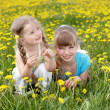 Children in field with flower. — Stock Photo #5188662