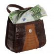Hand bag and euro. - Stock Photo