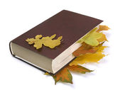 Autumn leaves in the book — Stock Photo