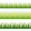 Green grass variation — Stock Vector