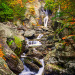 Bash Bish falls in Berkshires — стоковое фото #3979225